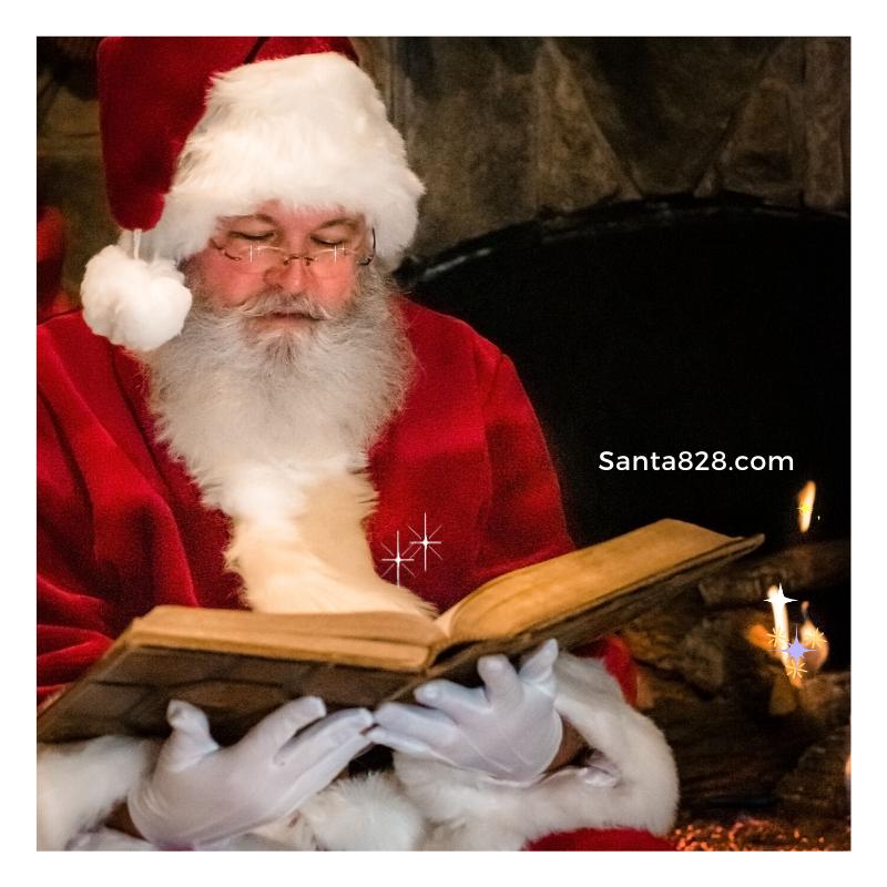 Mountain Santa aka Santa828